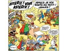 VIVE ASTERIX